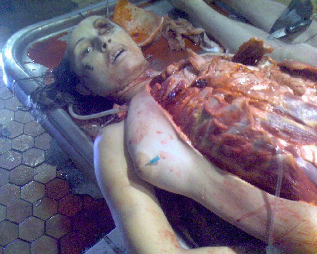 (グロ注意)女の子の解剖・内臓画像 10体目xvideo>3本 fc2>1本 YouTube動画>9本 ->画像>306枚